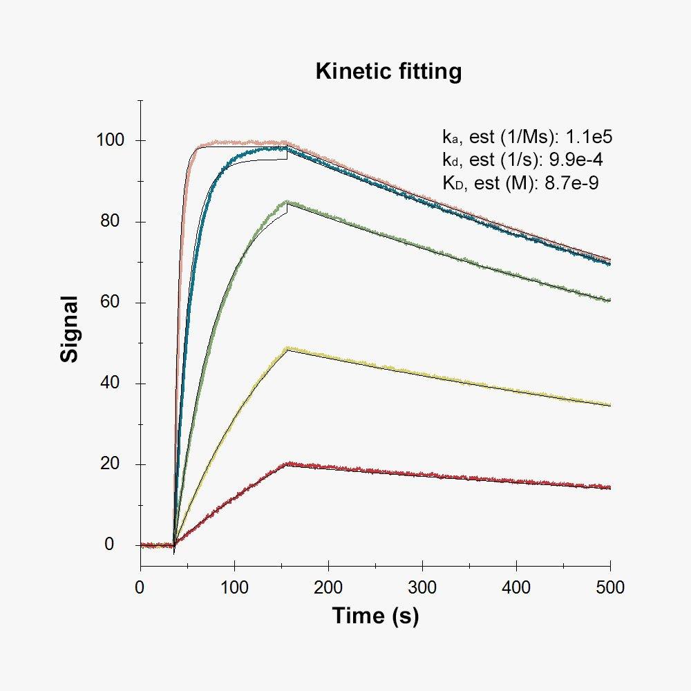 Kinetics_1000x1000_247