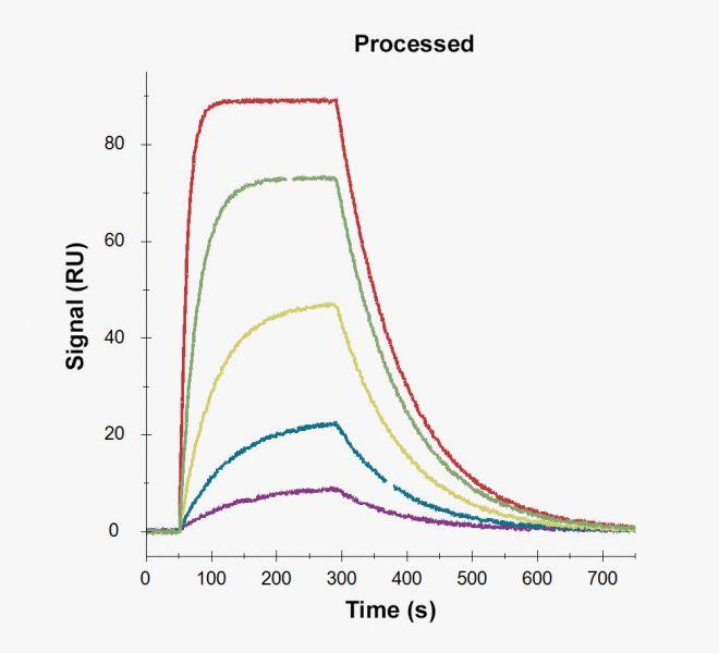 Processing2_1000x1000_247